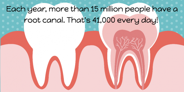 More than 15 million root canals are done each year.
